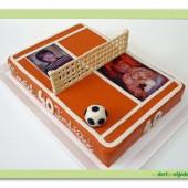 286.Sportovně fanouškovský marcipánový dort – antukový kurt