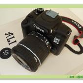 290. Fotoaparát – 3D marcipánový dort
