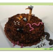 """415. Čokoládový dort """"hmyzáci"""""""