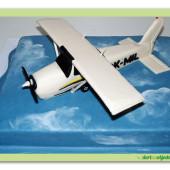 650. Letadlo v oblacích