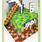 673. Minecraft dort s krumpáčem