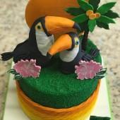 686. Tukani – 3D marcipánový dort